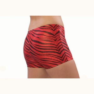Pizzazz Zebra Glitter Boy Cut Briefs